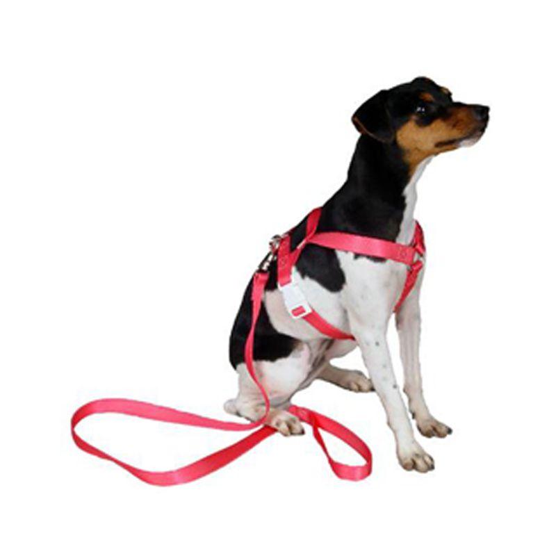 Coleira Peitoral Guia Para Cachorros  - Mundo Thata