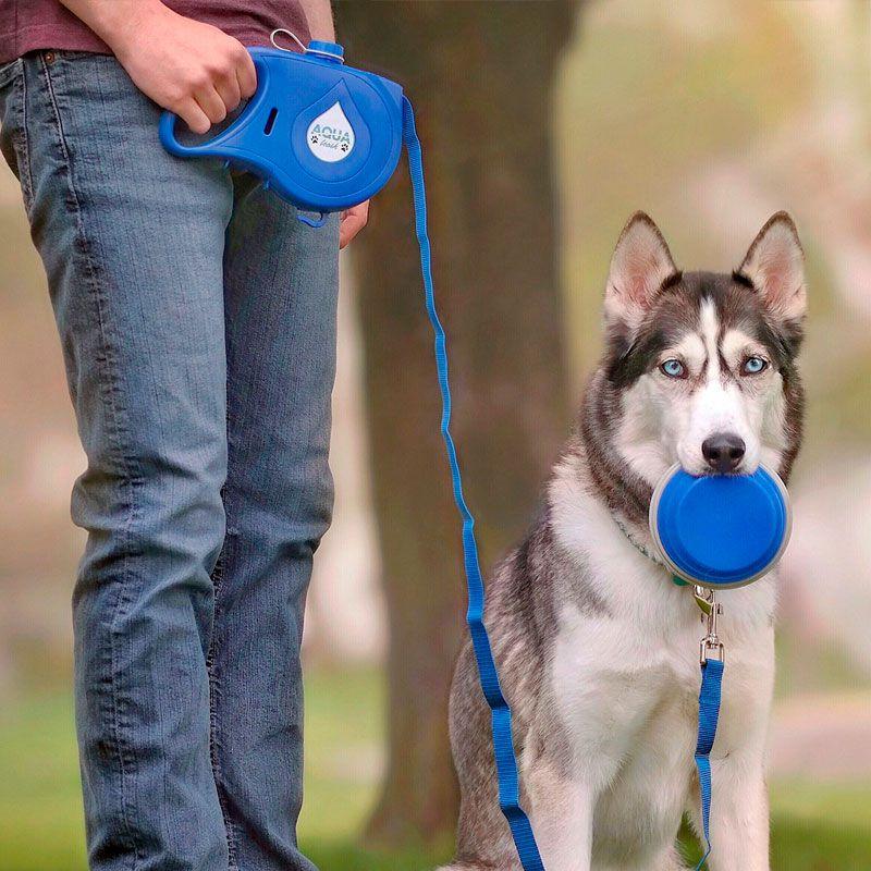 Kit Essencial 5 em 1 para Caminhada Cachorro Bebedouro Pote Coleira Pet Shop   - Mundo Thata