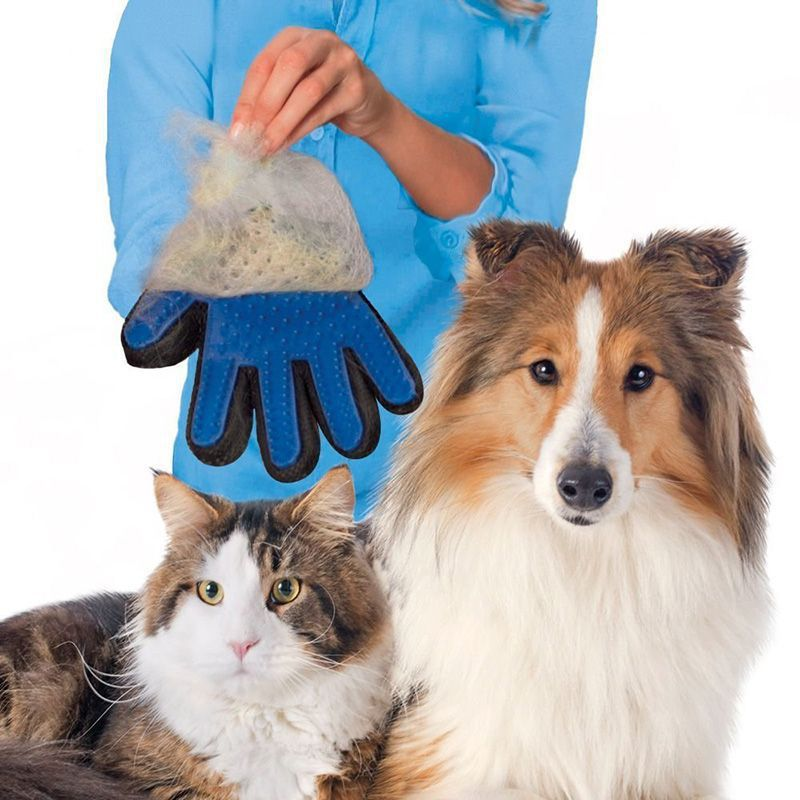 Luva Massageadora Limpa Cães e Gatos Pet Dog  - Mundo Thata