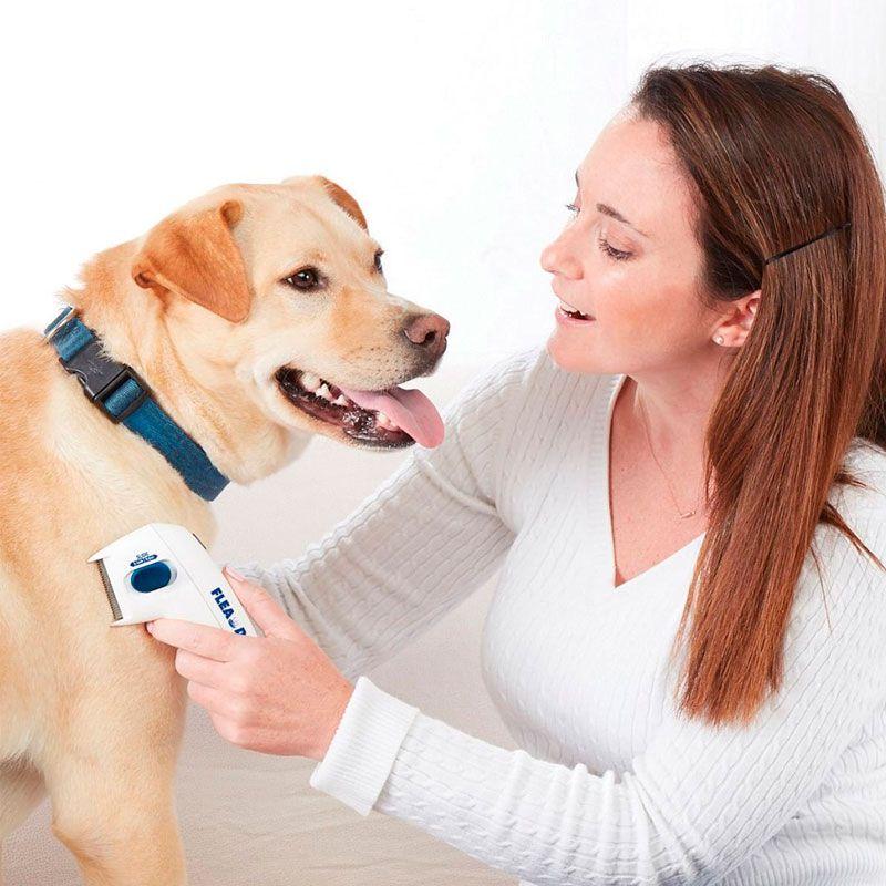 Pente Removedor de Pulga e Carrapato Flea Doctor para Cachorros e Gatos  - Mundo Thata