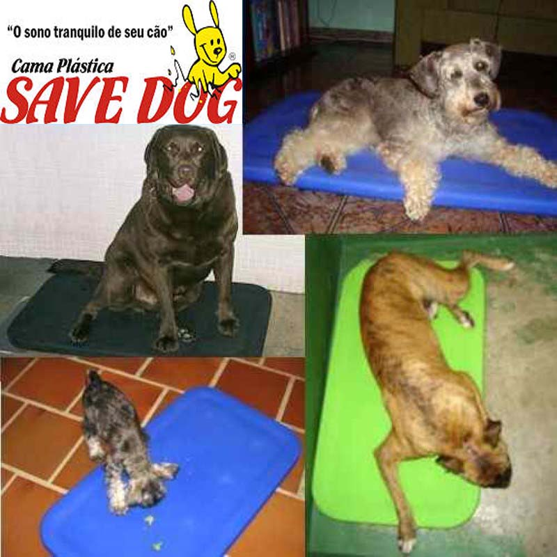 Cama Plástica Save Dog Ideal p/ Cães Super-Ativos e Destruidores  - FAMATECNOSHOP
