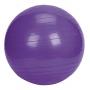 Bola Suiça Premium - 55cm