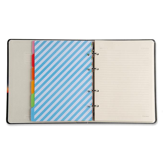 Caderno Criativo Argolado Tobogã Todas Juntas 17x24 Pautado CÍCERO