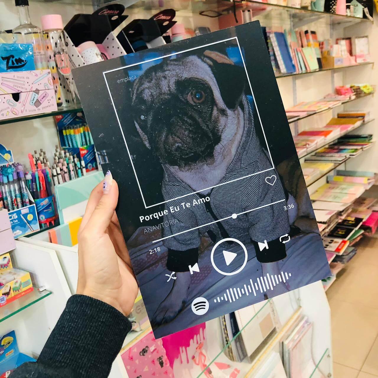 Quadro Spotify com Foto Inteira EMPLACA