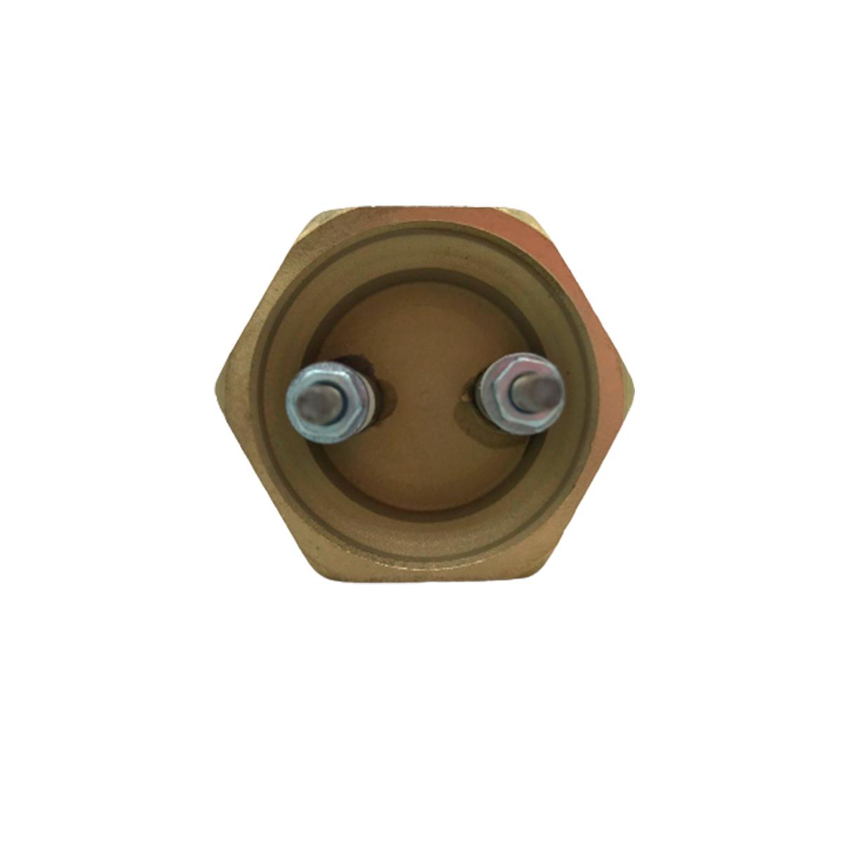 RESISTÊNCIA TUBULAR DE INOX 304 - 1 ELEMENTO E COM 3000 W X 220 V - ROSCA 1.1/4 COM 300 MM. COMPRIMENTO E SEM BULBO.