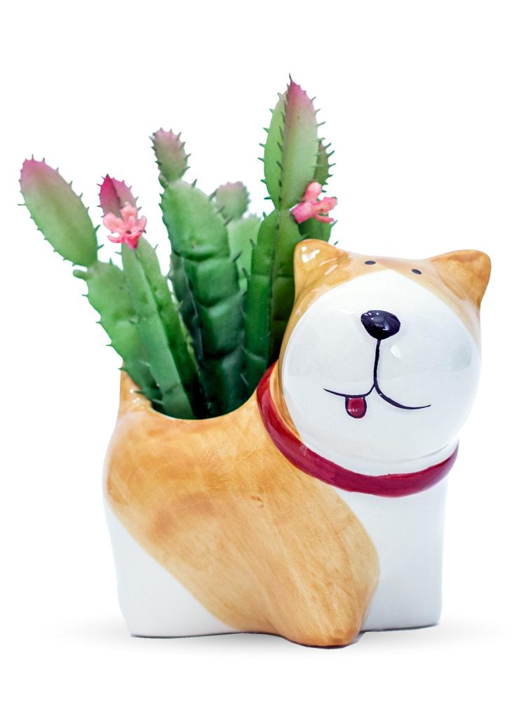 Arranjo Dog Nude - Cachepô + Cacto