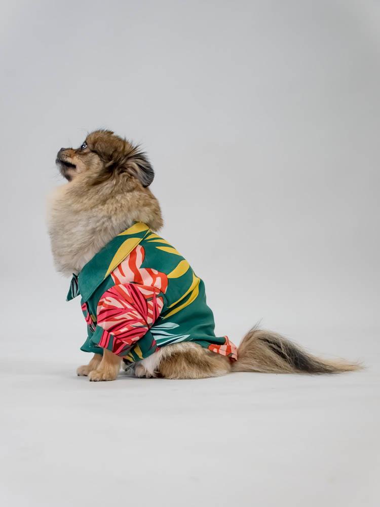 Camisa Pet Folhagem Verde  - Carmelina.com.br