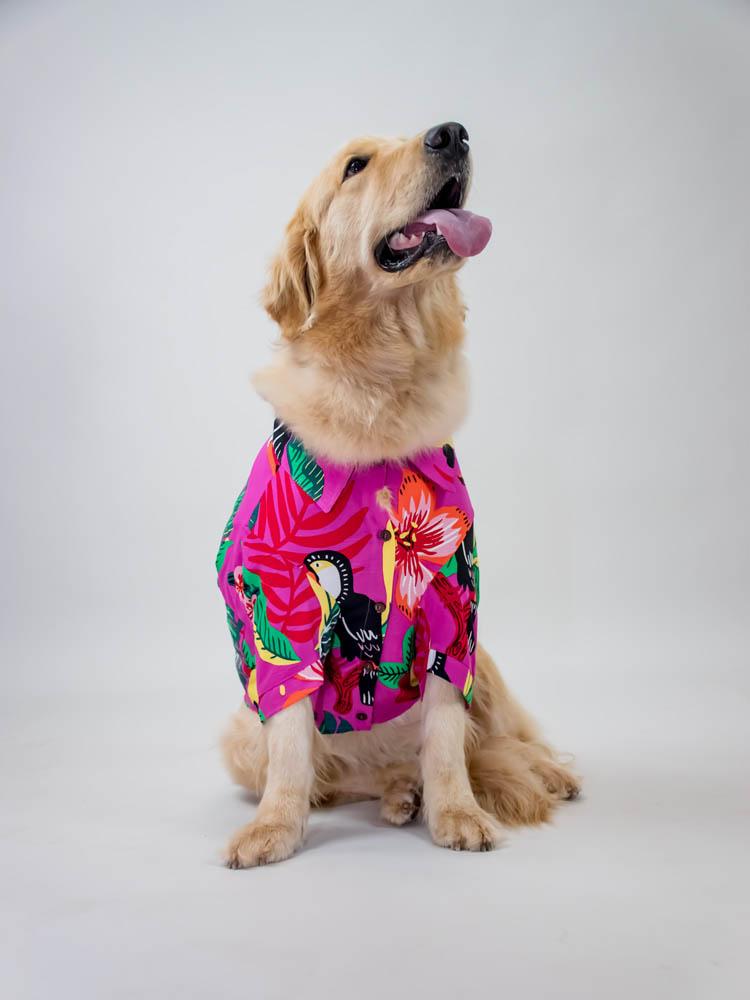 Camisa Pet Tucano Pink
