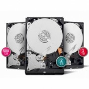 HD Interno Intelbras 1TB SATA II AV