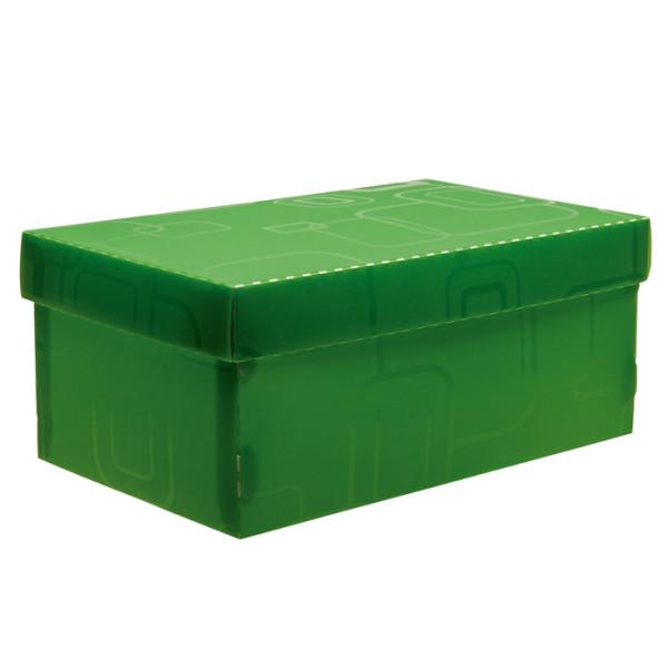 Caixa Organizadora Mini Sapato DELLO Verde 2169 C/5 Unid.