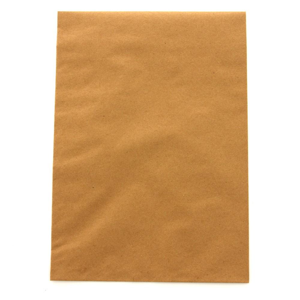 Envelope Saco Kraft Natural Scrity SKN032 229x324mm 80g 250 unidades