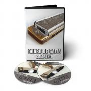 Curso de Gaita em 02 DVDs Videoaula