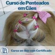 Curso on-line de Penteados em Cães com Certificado