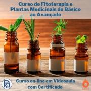 Curso on-line em videoaula de Fitoterapia e Plantas Medicinais do Básico ao Avançado com Certificado