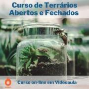 Curso on-line em videoaula de Terrários Abertos e Fechados