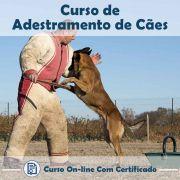 Curso online de Adestramento de Cães + Certificado