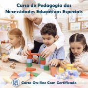Curso Online de Pedagogia das Necessidades Educativas Especiais com Certificado