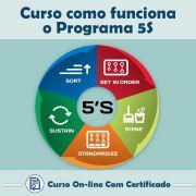 Curso online em videoaula de como funciona Programa 5S com Certificado