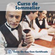 Curso online em videoaula de Sommelier com Certificado