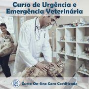 Curso online Urgência e Emergência Veterinária em videoaula sobre a com Certificado