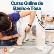 Curso on-line de Banho e Tosa