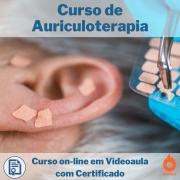 Curso on-line em videoaula de Auriculoterapia com Certificado