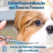 Curso on-line em videoaula de Especialização em Tosa na Tesoura com Certificado
