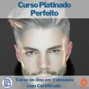 Curso on-line em videoaula Platinado Perfeito com Certificado