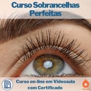 Curso on-line em videoaula Sobrancelhas Perfeitas com Certificado