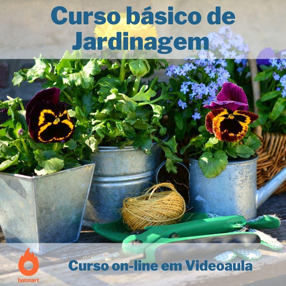 Curso on-line em videoaula básico de Jardinagem