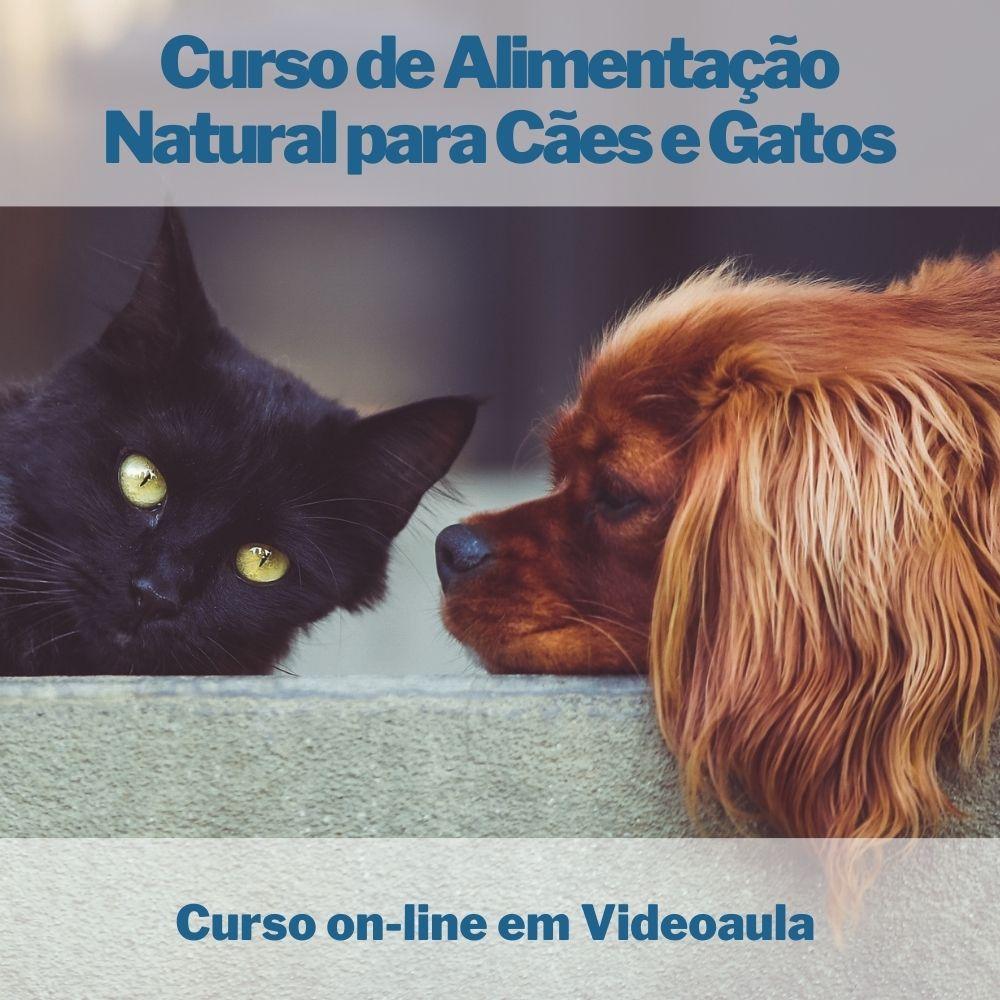 Curso on-line em videoaula de Alimentação Natural para Cães e Gatos