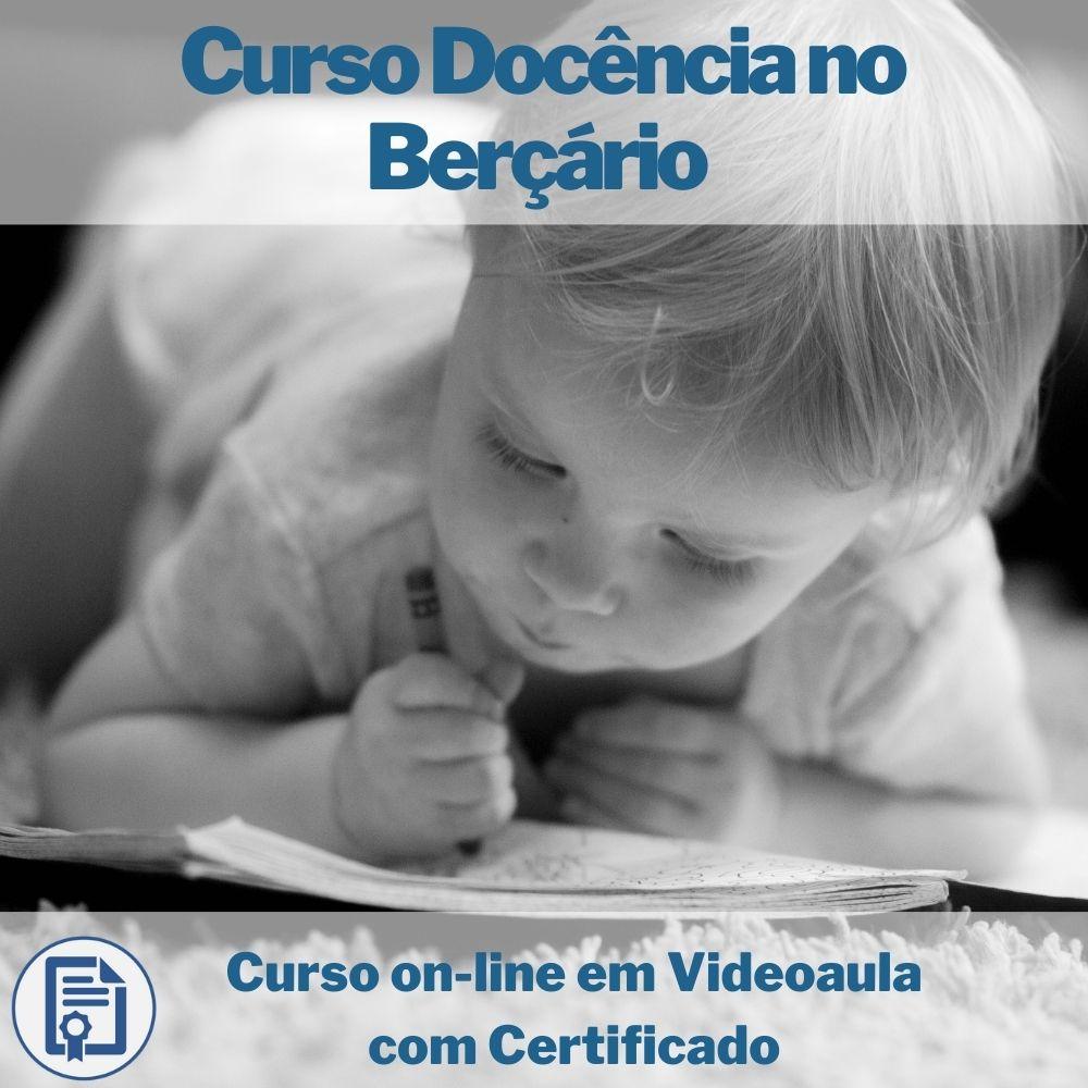 Curso on-line em videoaula de Docência no Berçário com Certificado