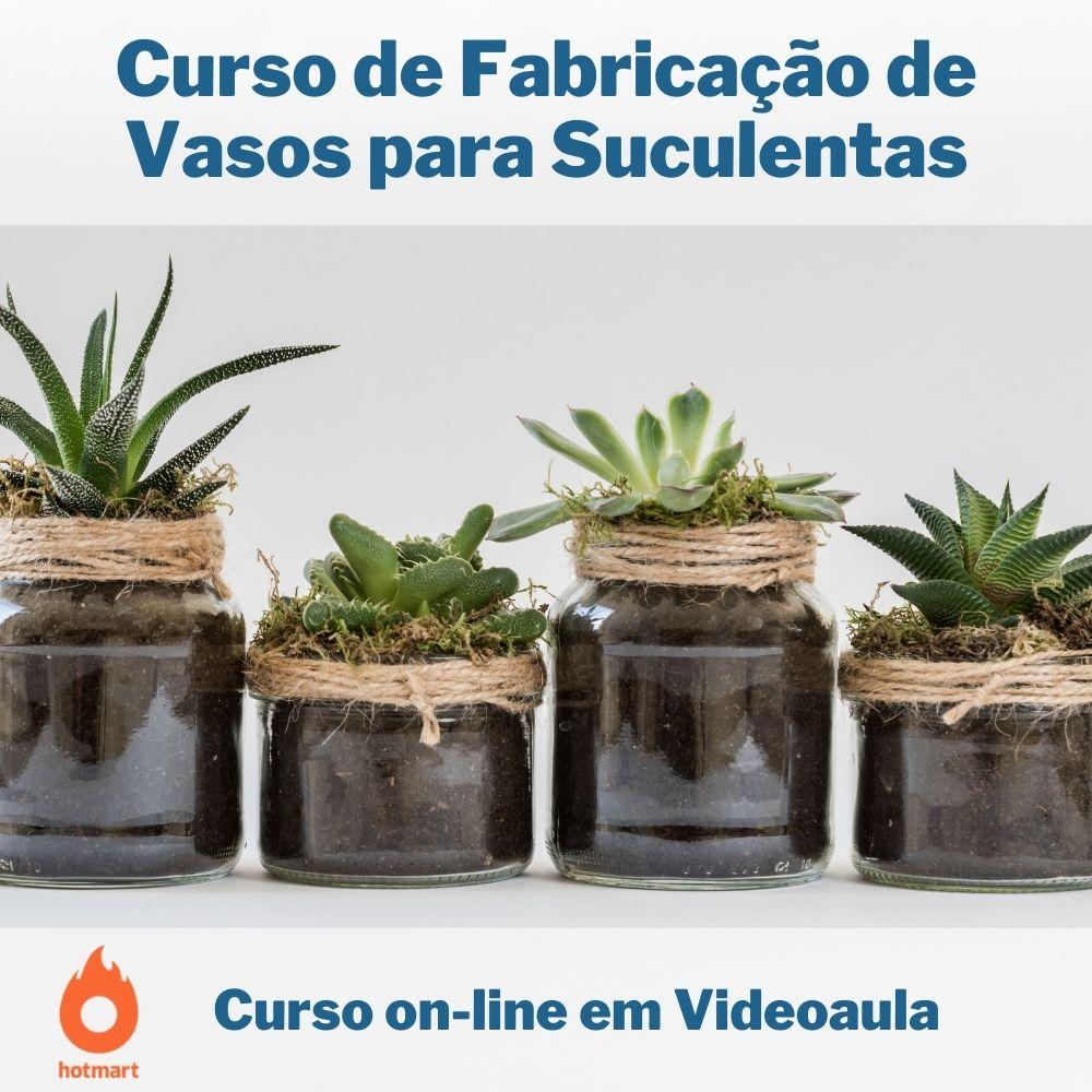 Curso on-line em videoaula de Fabricação de Vasos para Suculentas