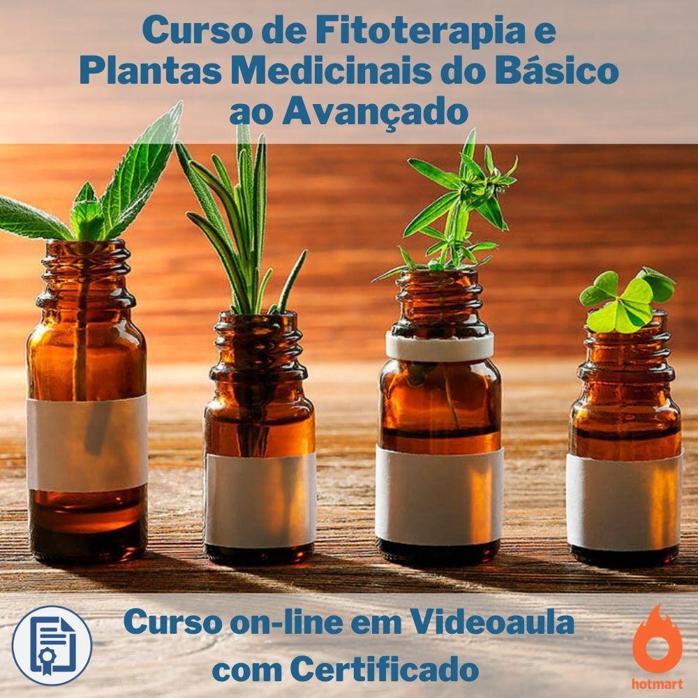 Curso on-line em videoaula de Fitoterapia e Plantas Medicinais do Básico ao Avançado com Certificado   - Aprova Cursos