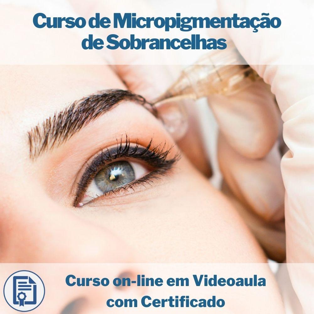 Curso on-line em videoaula de Micropigmentação de Sobrancelhas com Certificado