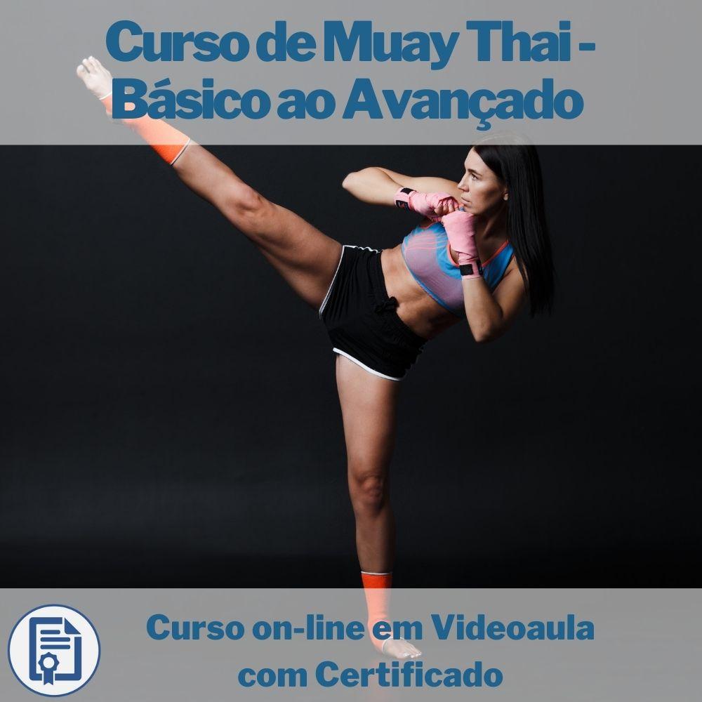 Curso on-line em videoaula de Muay Thai - Básico ao Avançado com Certificado