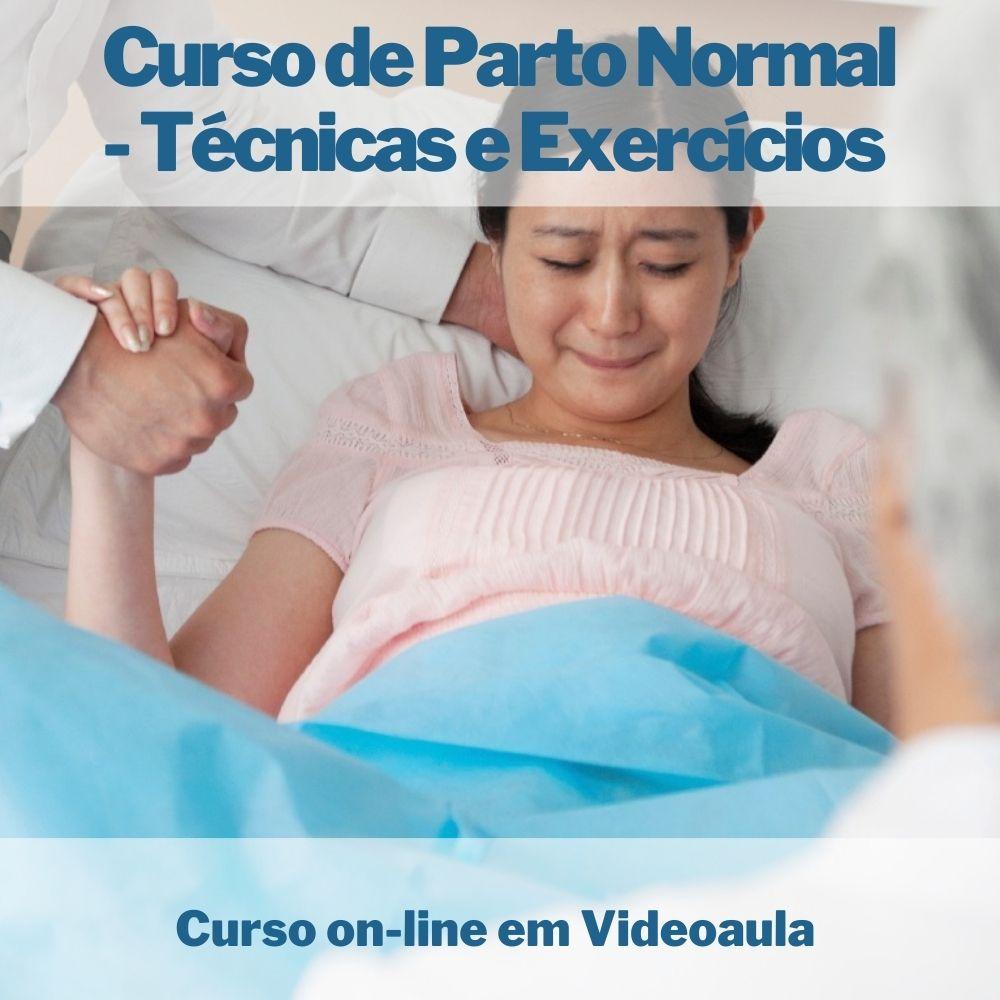 Curso on-line em videoaula de Parto Normal - Técnicas e Exercícios