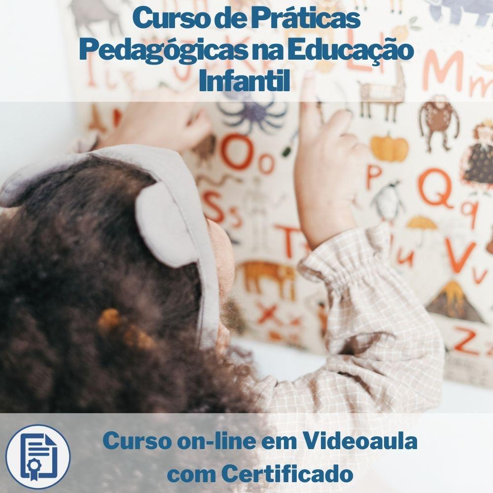 Curso on-line em videoaula de Práticas Pedagógicas na Educação Infantil com Certificado