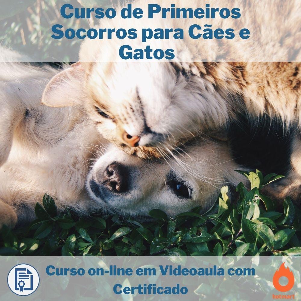 Curso on-line em videoaula de Primeiros Socorros para Cães e Gatos com Certificado