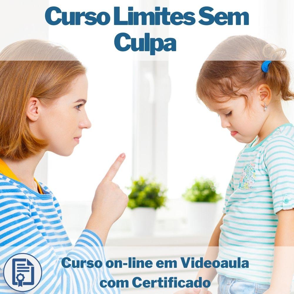 Curso on-line em videoaula Limites sem Culpa - Eduque Seu Filho com Certificado