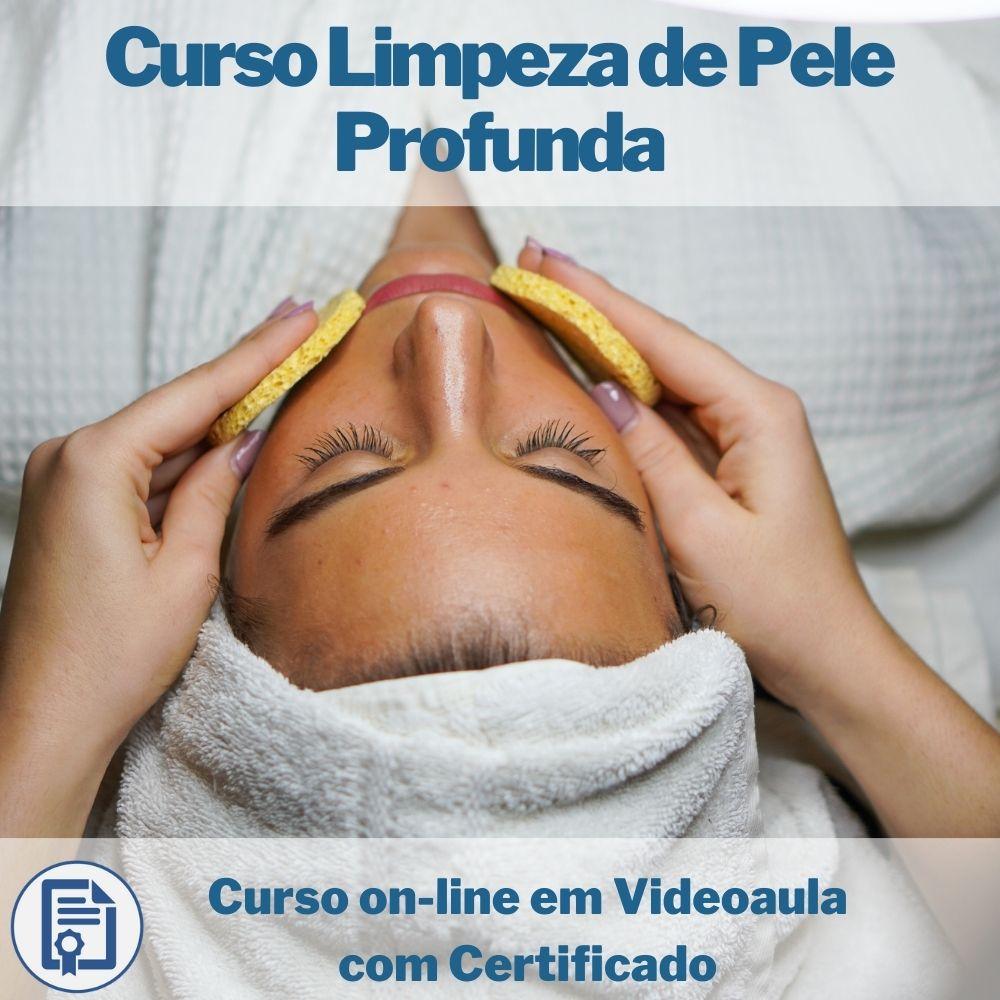 Curso on-line em videoaula Limpeza de Pele Profunda com Certificado