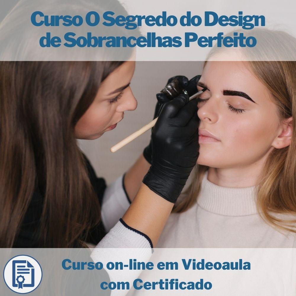 Curso on-line em videoaula O Segredo do Design de Sobrancelhas Perfeitas com Certificado