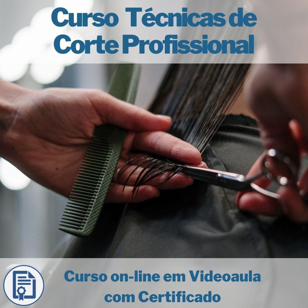 Curso on-line em videoaula Técnicas de Corte Profissional com Certificado