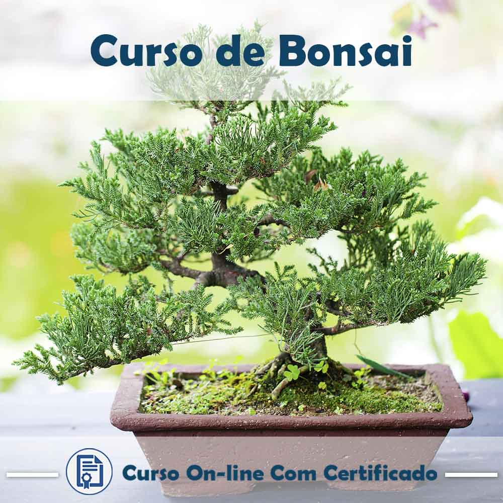 Curso Online de Bonsai com Certificado