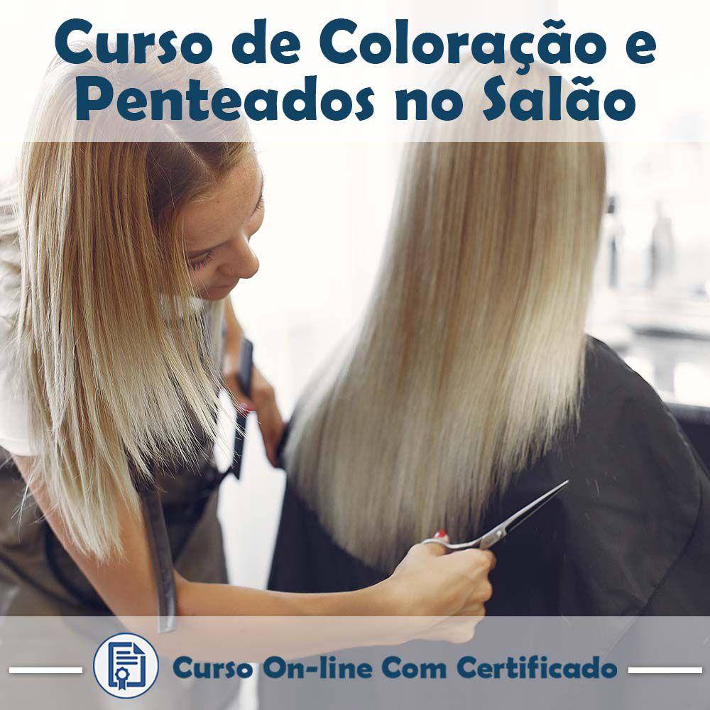 Curso Online de Coloração e Penteados no Salão com Certificado  - Aprova Cursos