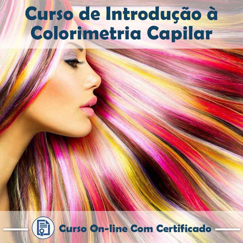 Curso Online de Introdução a Colorimetria Capilar com Certificado