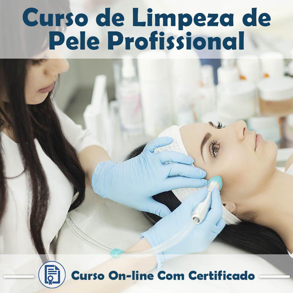 Curso Online de Limpeza de Pele Profissional com Certificado  - Aprova Cursos