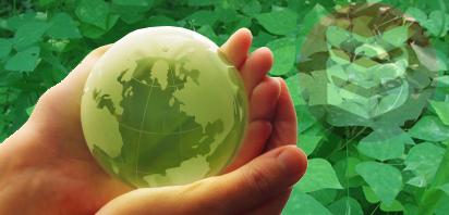 Curso online de Projetos Ambientais + Certificado  - DIGITAL NEGOCIOS COMERCIO ONLINE