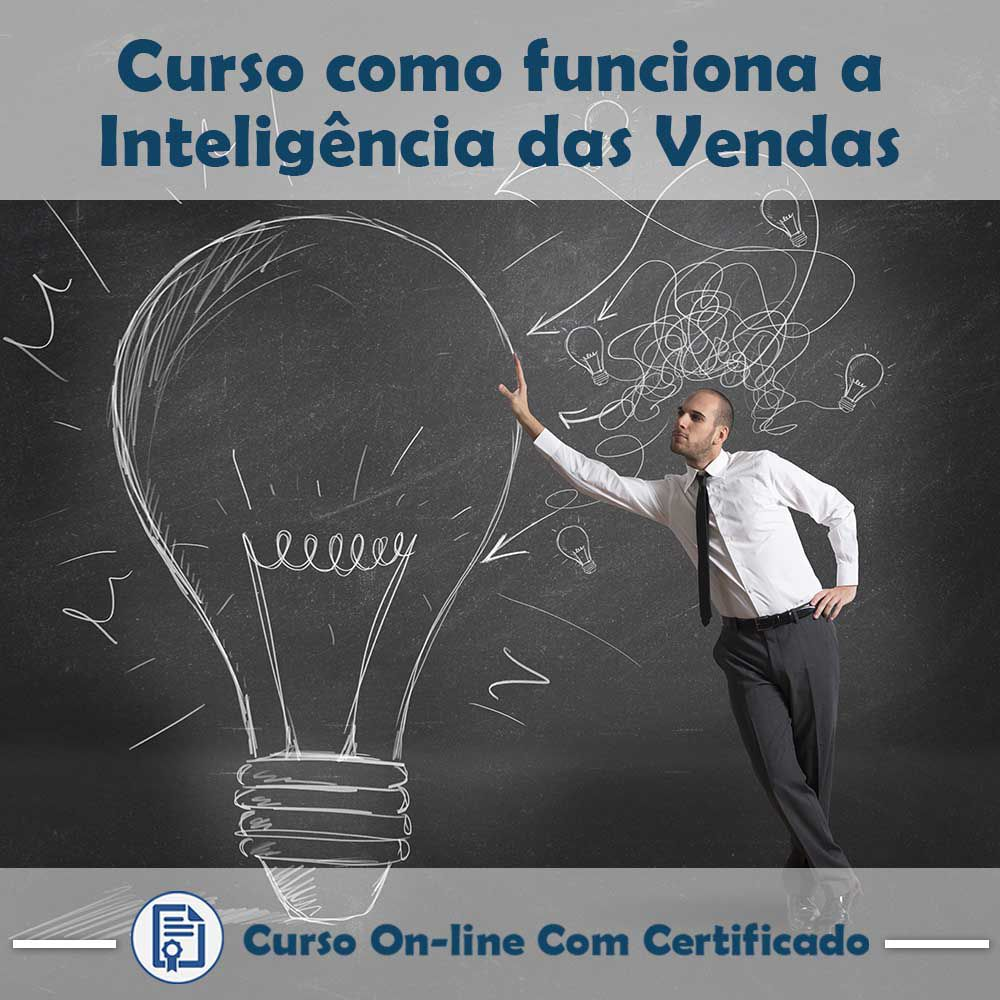 Curso online em videoaula de como funciona Inteligência de Vendas com Certificado