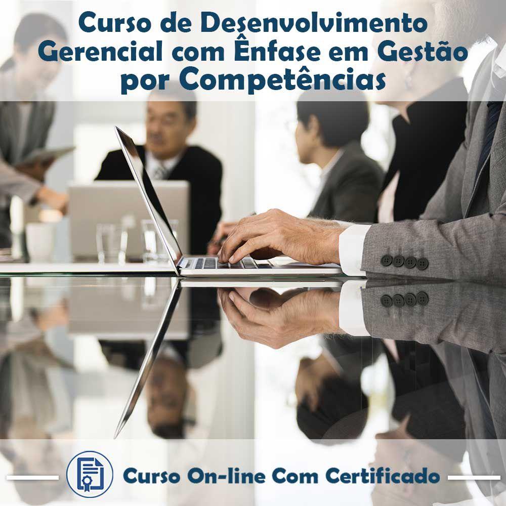 Curso online em videoaula de Desenvolvimento Gerencial com Ênfase em Gestão por Competências com Certificado